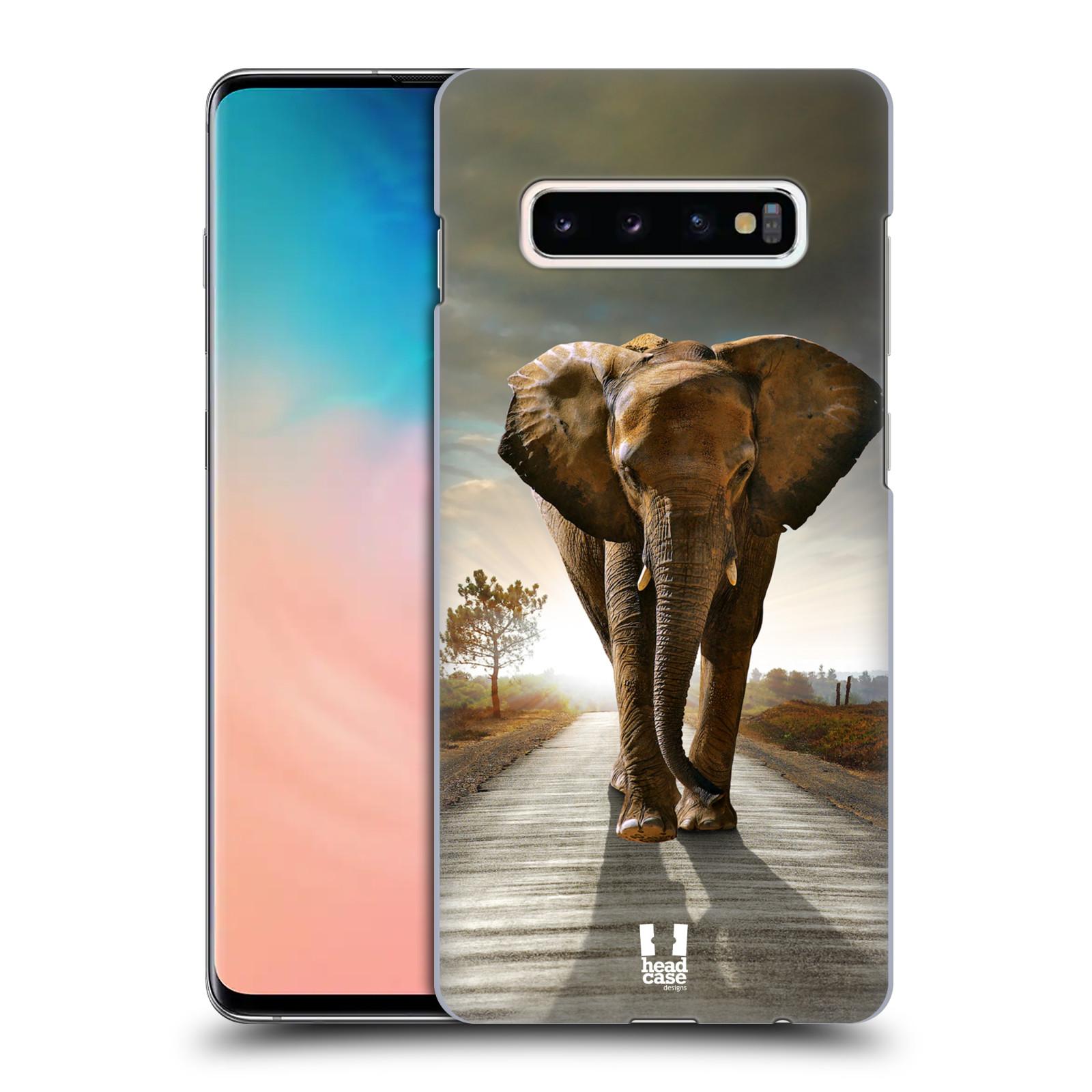 Plastové pouzdro na mobil Samsung Galaxy S10 Plus - Head Case - DIVOČINA – SLON