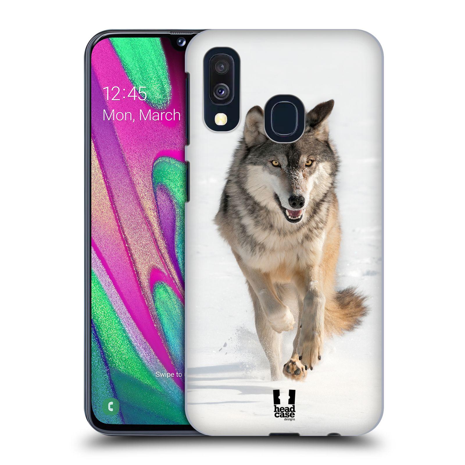 Plastové pouzdro na mobil Samsung Galaxy A40 - Head Case - DIVOČINA – VLK